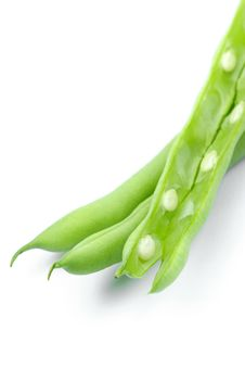 Free French Beans Stock Images - 13638694