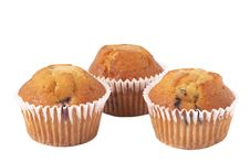Free Blueberry Muffins On White Stock Photo - 13638750