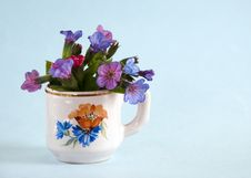 Free Blue Flowers In Vase Stock Photography - 13639132