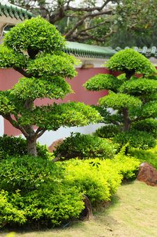 Free Japanese Garden Stock Photos - 13639303