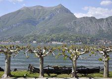 The Gardens Of Villa Melzi, Lake Como Royalty Free Stock Image