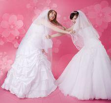 Free Happy Bride Royalty Free Stock Image - 13640706