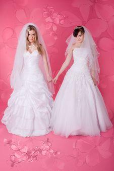 Free Happy Bride Stock Photos - 13640743