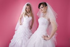 Free Two Brides Royalty Free Stock Photos - 13640778