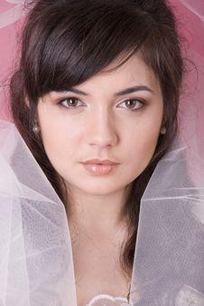 Free Happy Bride Stock Photo - 13640850