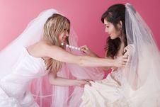 Free Happy Bride Royalty Free Stock Photo - 13640855
