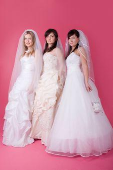 Free Happy Bride Royalty Free Stock Photos - 13640878