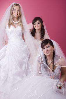 Free Bride Stock Photo - 13640890