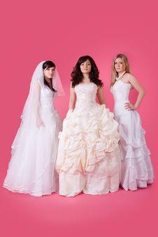 Free Happy Bride Stock Photo - 13640910