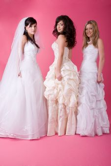 Free Happy Bride Stock Photos - 13640913