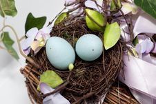 Free Nest Royalty Free Stock Images - 13645979