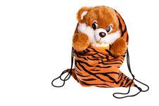 Free Teddy Bear Inside A Bag Royalty Free Stock Photo - 13646885