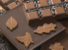 Free Chocolate Stock Images - 13647864