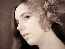 Free Forms Of Beauty Stock Photography - 13648012