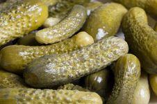 Free Marinated Cucumber Stock Image - 13648771
