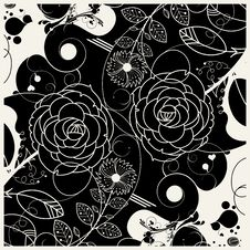 Free Flower Stock Image - 13649091