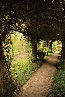 Free Arbor Trellis Pathway Stock Photo - 13649580