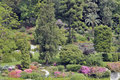 Free Grounds Of Villa Carlotta On Lake Como Royalty Free Stock Photos - 13654428