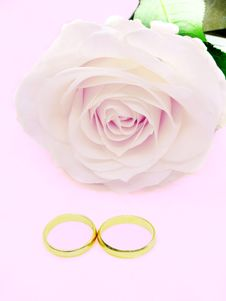 Free Pink Rose And Wedding Rings Stock Images - 13651074