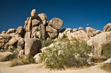Free Nature In Joshua Tree National Park Stock Photography - 13652012