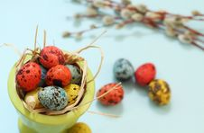 Free Eggs And Willow Royalty Free Stock Images - 13653279