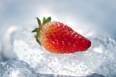 Free Strawberry On Ice Royalty Free Stock Photo - 13654215