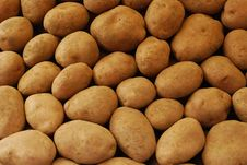 Free Potatoes Stock Photography - 13654712