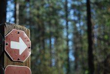 Free Trail Arrow Stock Photo - 13657020