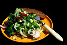 Free Salad In A Yellow Plate Stock Photo - 13658700
