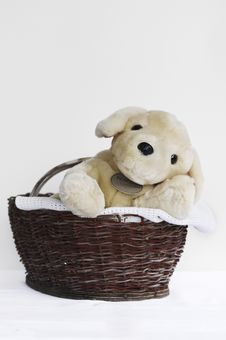 Free Plush Toy Stock Photo - 13659620