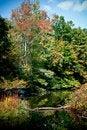 Free Autumn Lake Reflection Stock Photography - 13662442