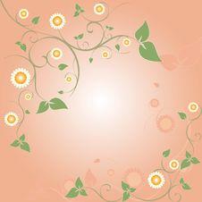 Free Springtime Floral Frame Stock Photo - 13660180
