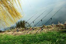 Free Fishing Royalty Free Stock Photos - 13661508