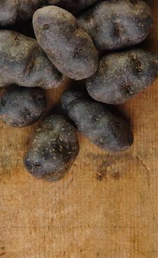 Purple Fingerling Potatoes Stock Image
