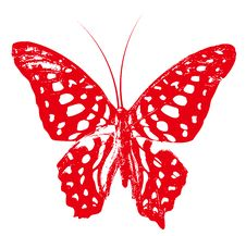 Free Red Butterfly Royalty Free Stock Image - 13663406