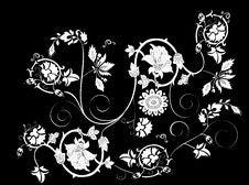 White Flower Pattern Royalty Free Stock Photos