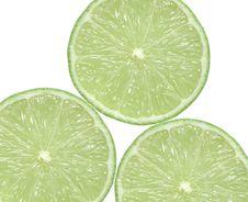 Lime Citrus Slice Stock Photos