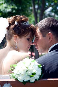 Free Bride And Groom Stock Photography - 13665172