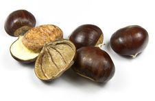 Free Chestnuts (castanea Sativa) Stock Photo - 13665950