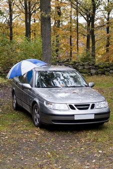 Free Umbrella Car Royalty Free Stock Image - 13667916