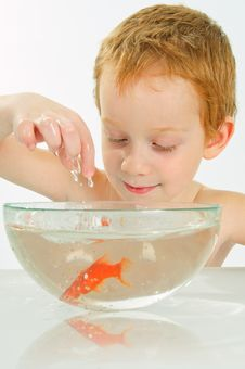 Free Boy And Fish. Stock Images - 13668914