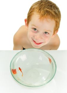Free Boy And Fish. Stock Photo - 13668920