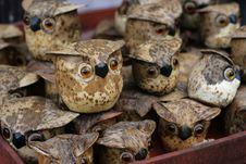 Free Handmade Owls Royalty Free Stock Photo - 13669125