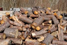 Free Wood, Lumber, Logging, Tree Stock Photo - 136625090