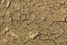 Free Soil, Drought, Tree, Geology Royalty Free Stock Image - 136625166