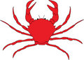 Free Crab Stock Photography - 13676642