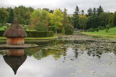 Free Ornamental Pond Stock Image - 13672341