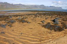 Yellow Sand In Fjord, Iceland. Royalty Free Stock Photography
