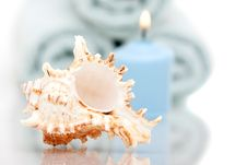 Free Seashell And Candle Royalty Free Stock Image - 13673186