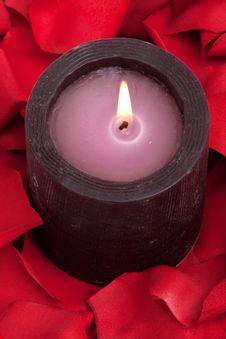 Free Candle And Rose Petals Royalty Free Stock Images - 13673389